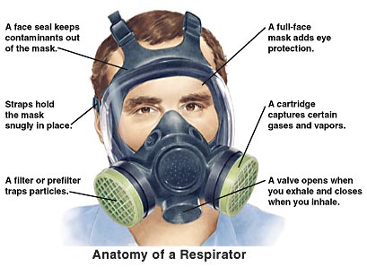 Anatomy of respirator. Face seal keeps contaminants out of mask. Straps hold mask snugly in place. Filter or prefilter traps particles. Full-face mask adds eye protection. Cartridge captures certain gases and vapors. Valve opens when you exhale and closes when you inhale.